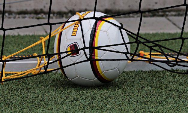 Fodboldmål Til Haven