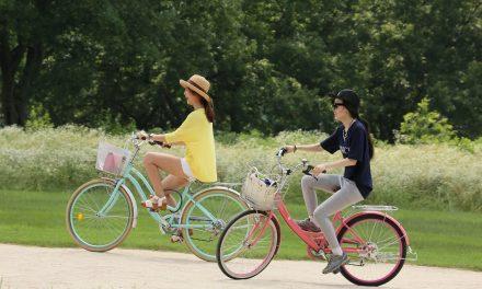 Hamax Cykelstol